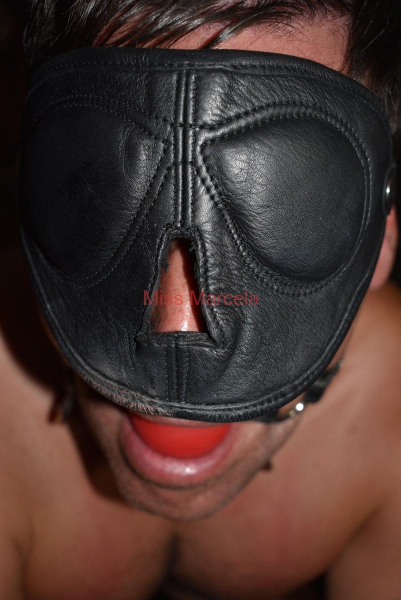 Fesseln & Halsbänder, Bondage, BDSM