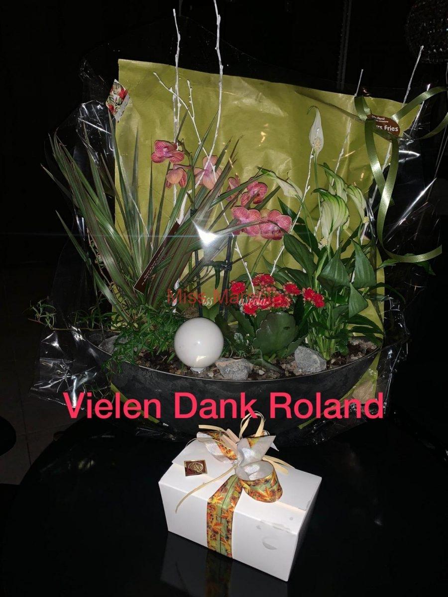 Geschenk-Miss-Marcela-von-Sklave-Roland
